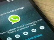whatsapp forward preview feature
